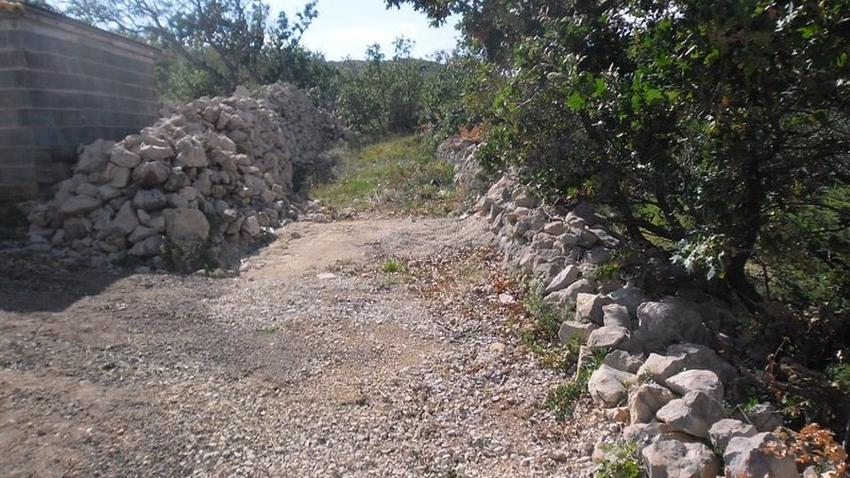 BUILDING LAND IN VINJERAC  3 000 SQM, ZADAR AREA!