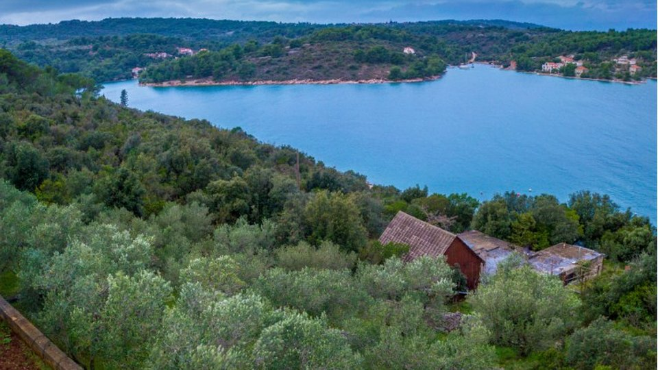 Land, 1713 m2, For Sale, Šolta
