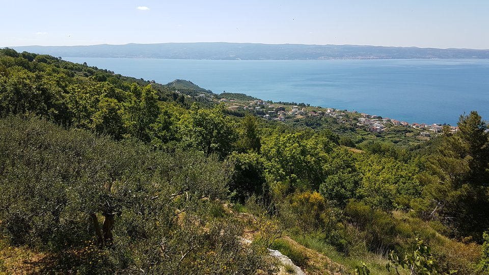BUILDING LAND PLOT WITH PANORAMIC VIEW ON PODSTRANA, SPLIT AND BRAČ!