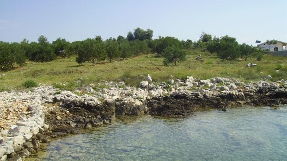 Land, 8124 m2, For Sale, Zadar